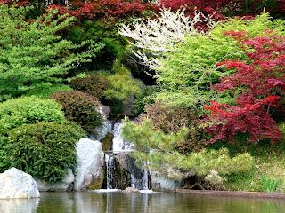 Imágenes de paisajes naturales