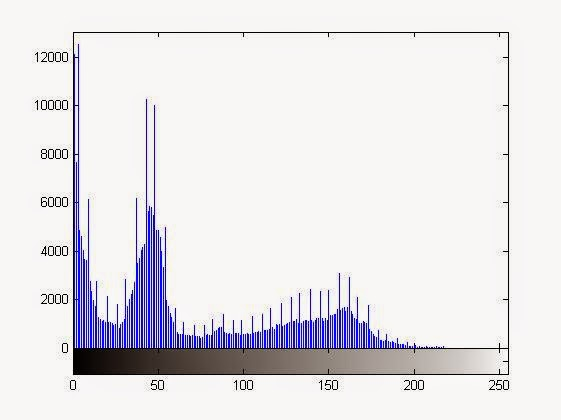Left Shifted Histogram after the multiplication operation on the image