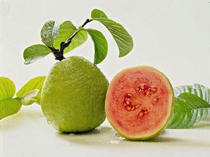 manfaat jambu biji untuk kulit,jambu biji merah,daun jambu biji,jambu air,jambu biji merah untuk kulit,jambu biji untuk diet,