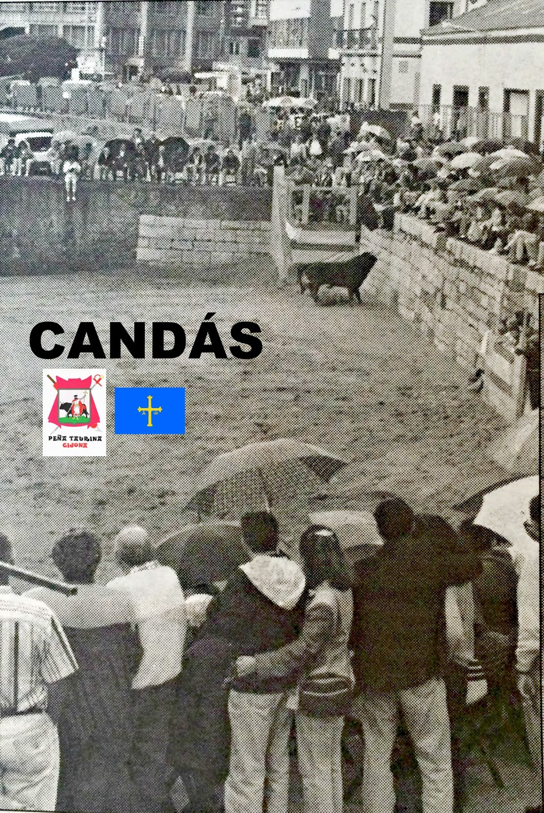 CANDÁS TOROS