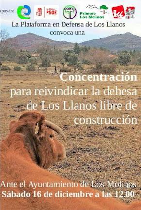 Concentración en defensa de Los Llanos