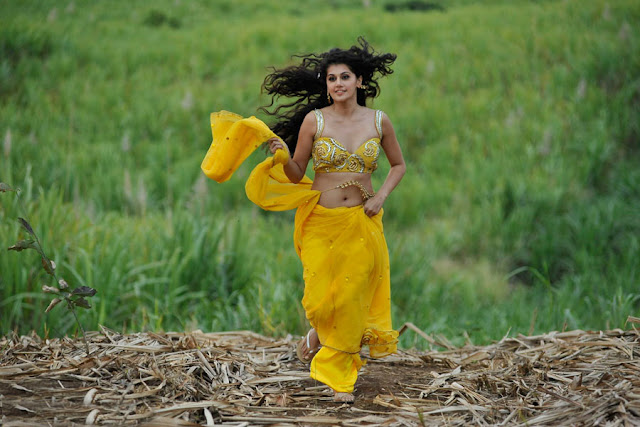 tapsee new spicy saree in mogudu unseen pics