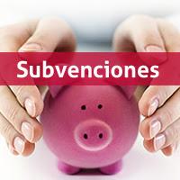 http://4.bp.blogspot.com/-YErPA4G4gq4/UR_GXWSw3dI/AAAAAAAAAWg/LtpeHmJL1Bs/s320/subvenciones.jpg