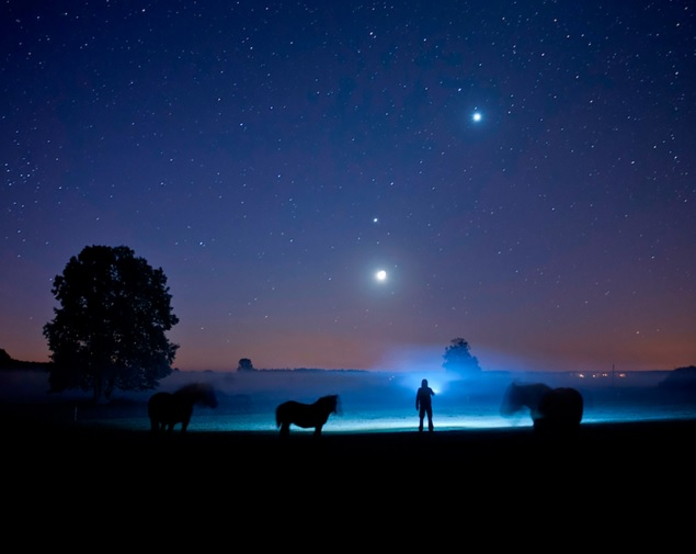 Cielo con estrellas y caballos