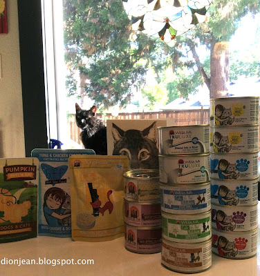 Picky senior cat and cat food