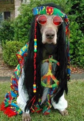 Halloween Peace Hippie Dog Costume