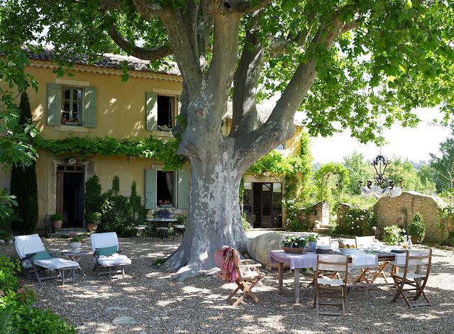 Decordemon inspiration mediterraneanl summer outdoors for Arboles de sombra para jardin