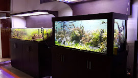 KITCHEN SET, MEJA KABINET AQUARIUM , PARTISI RUANGAN