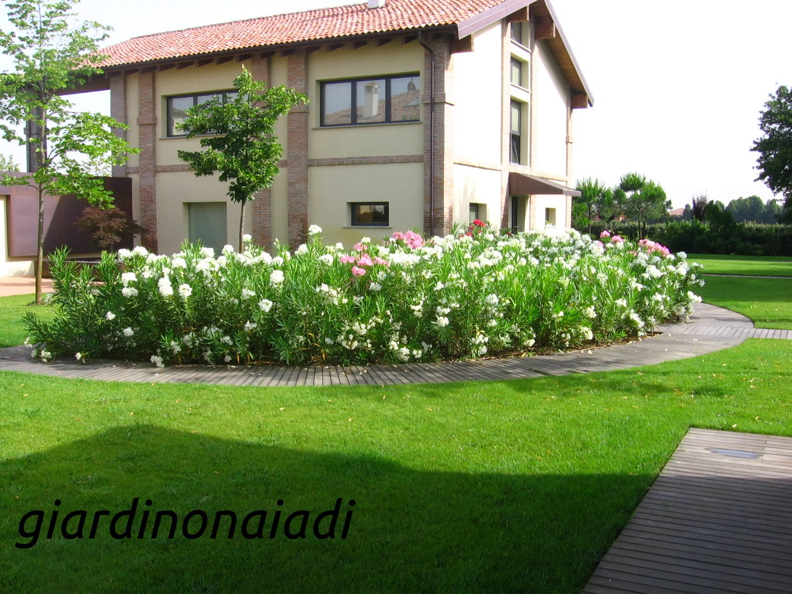 Il giardino delle naiadi progettare bordure e aiuole for Prezzi piante da giardino