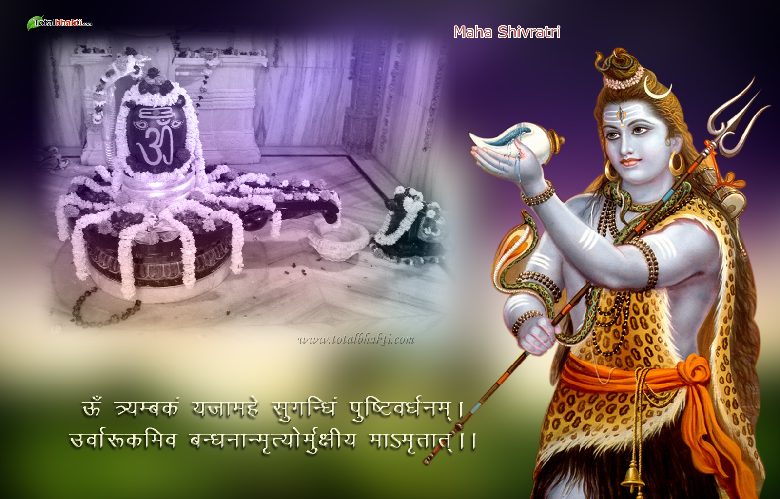 http://4.bp.blogspot.com/-YFFnbfLdMKQ/Tvt3HltgSrI/AAAAAAAADKU/GIZSI3p1G_Q/s1600/Maha-Shivratri-3427.jpg