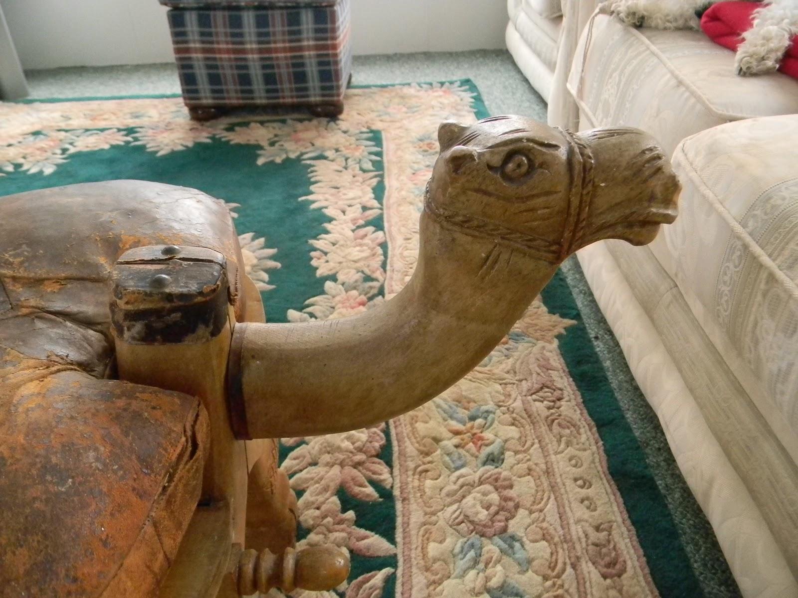 Camel Foot