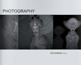 SL Photography - December 2014