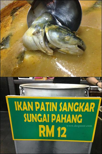 Ikan Patin Sangkar Sungai Pahang