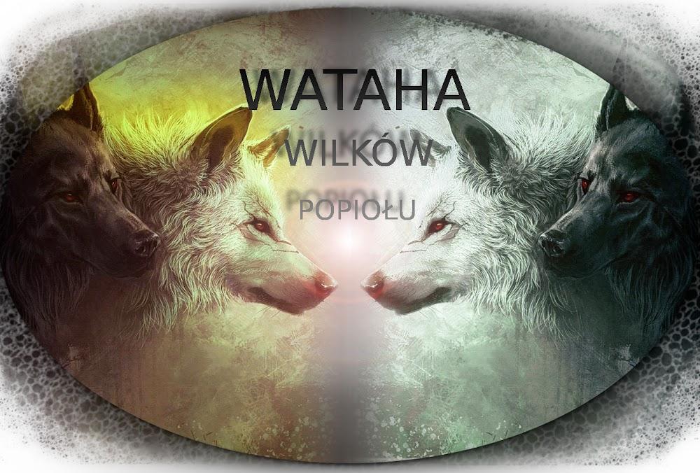 Wataha Wilków Popiołu