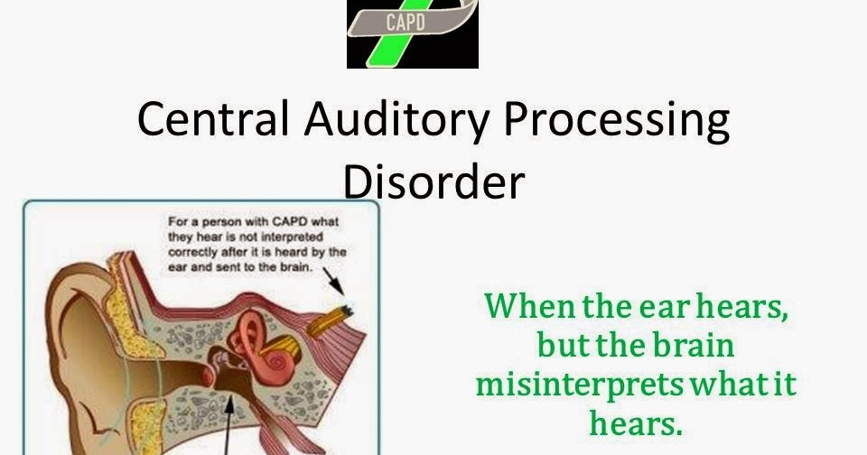 supporting a child with auditory processing 65 suggestions for successful management of students with central auditory processing disorder (capd): tips for the teacher the student with a central auditory processing disorder (capd) will respond in a variety of ways to changes within.