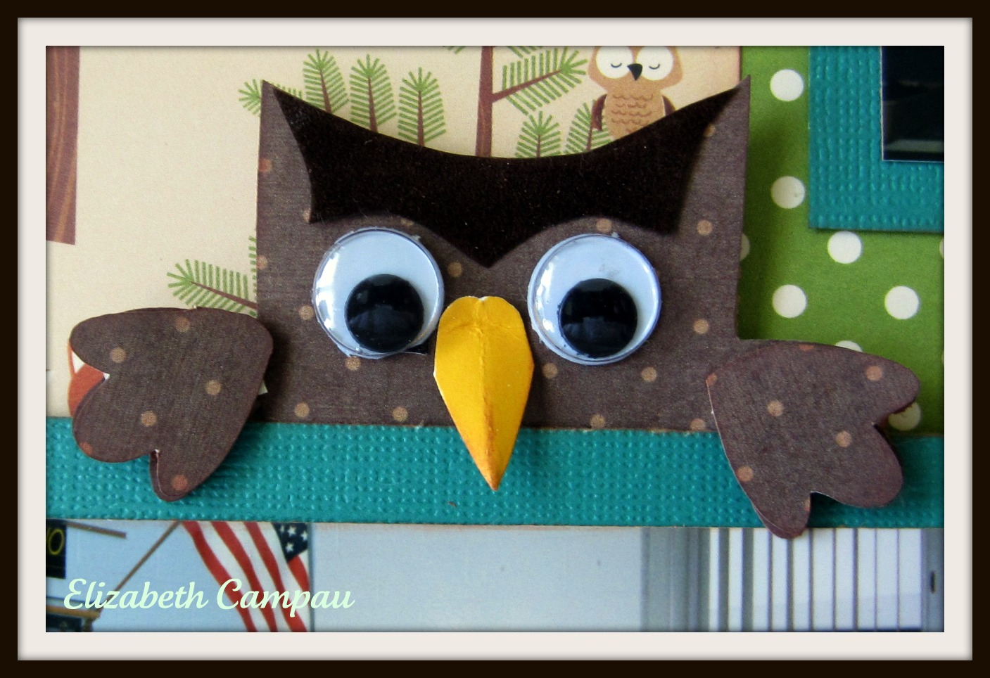 Owl Classroom Decorations ~ Visions of paper hoot owl classroom layout