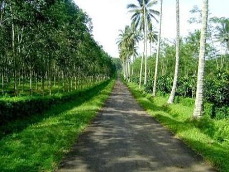 Agrowisata Kalibendo