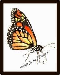 Monarch #2