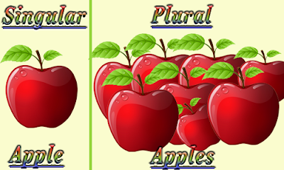 Teacher Marian Andújar: SINGULAR AND PLURAL NOUNS
