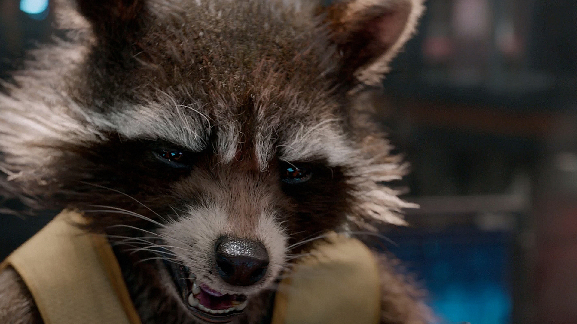 Rocket Raccoon (Bradley Cooper Voice) Guardians of the Galaxy. HD ...