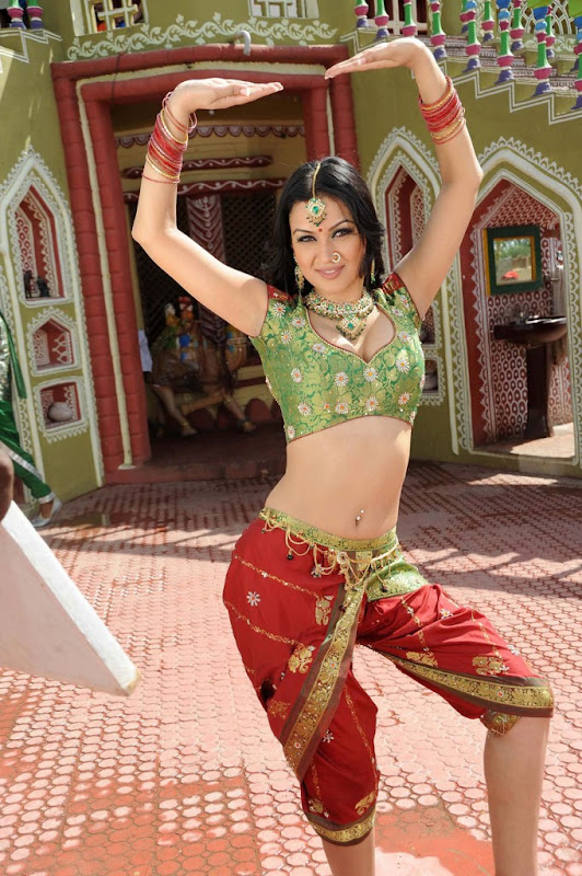 Maryam Zakaria  Iranian Tamil Beautiful Item Actress Hot and Spicy Stills sexy stills