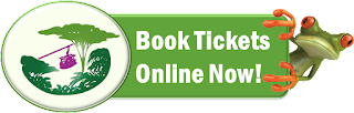 Book Aerial Tram Tickets - Rainforest Adventures Costa Rica Atlantic