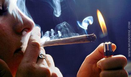 Vale a pena legalizar a maconha?