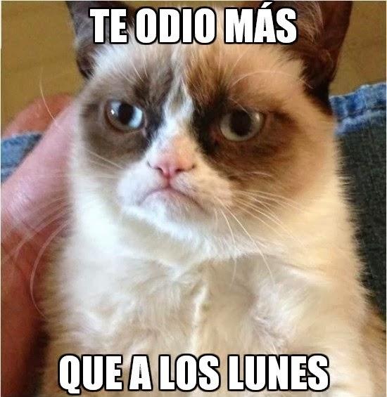 Grumpy Cat - El gato gruñón: Te odio más.... que a los lunes.