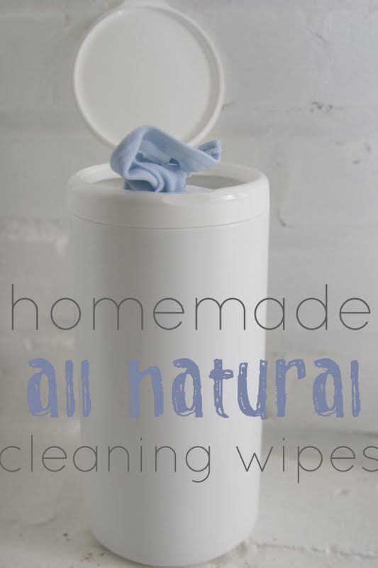 Homemade Natural Series: Homemade Cleaning Wipes