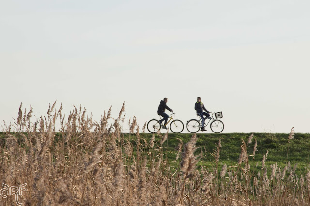 two cyclists on the dike
