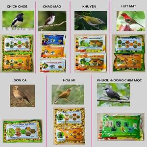Bird Feed [Thức Ăn Chim]