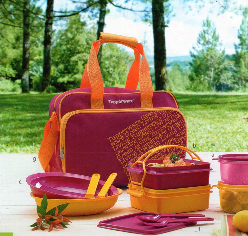 Katalog Tupperware Promo Juni 2013-Picnicaholic, tupperwareraya
