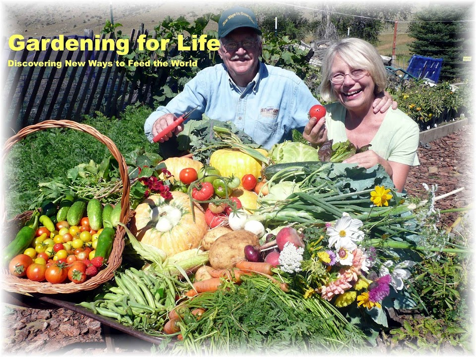 Gardening for Life - Discovering New Ways To Feed The World