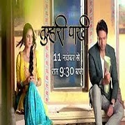 Tumhari Pakhi Episode 238 - 9th october 2014 | Life Ok Tv