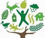 2011 - Ano Internacional das Florestas.