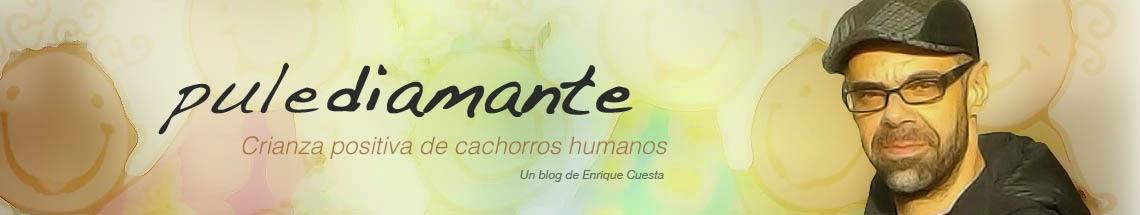 PROXIMAS FORMACIONES GRATUITAS EN CUENCA Y VALLADOLID (ABRIL-MAYO)