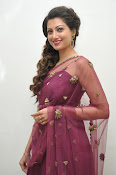 Hamsa Nandini at Bengal tiger audio-thumbnail-6