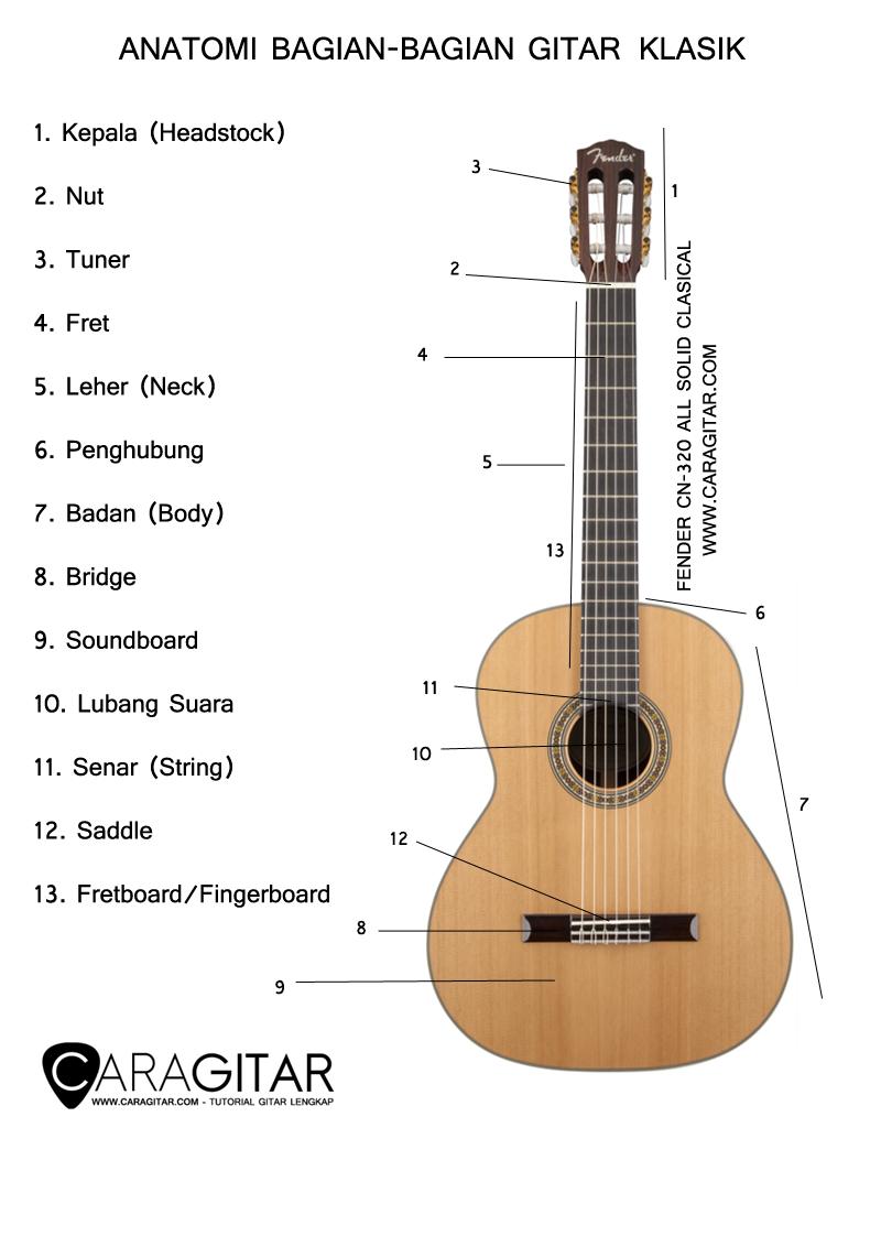 Anatomi Bagian-Bagian Gitar Klasik - TUTORIAL GITAR LENGKAP