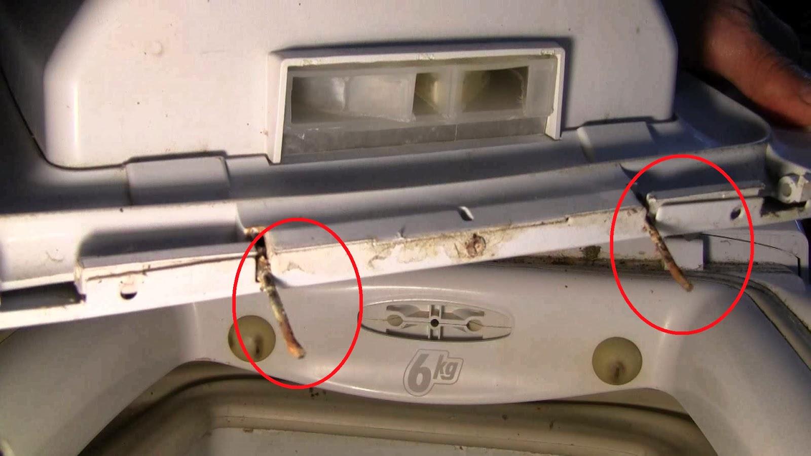Come smontare coperchio lavatrice carica dall alto for Lavatrice con carica dall alto