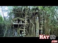 Phim: Bộ tộc ăn thịt người (18+) | hay88.com