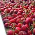 Η Μόσχα εξετάζει την επιβολή περιορισμών στην εισαγωγή φρούτων από την Ελλάδα