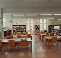 Imatge de la biblioteca