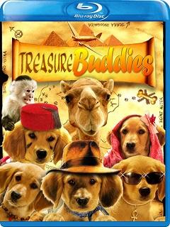 treasurebuddies Buddies: Cazadores de Tesoros (2012) Dvdrip Latino 1 Link