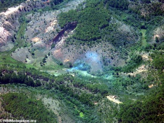 Tropical Rainforests of Madagascar