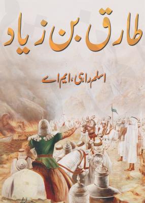 tariq bin ziyada novel