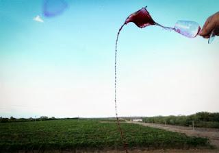 Vinho doce domina produção, mas mercado de espumantes, que dobrou de tamanho em dez anos, começa a ganhar força