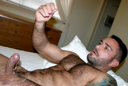 Big and hairy beaver