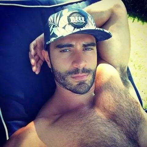 Gay Bear Hairy Armpits Sunbathing