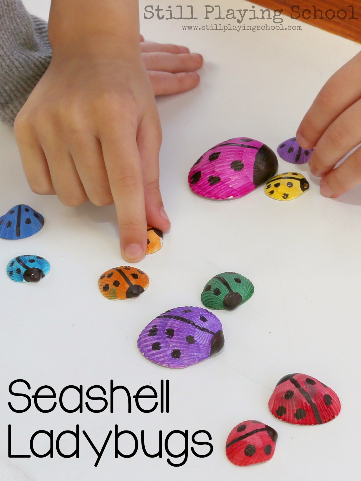 Seashell Ladybug Craft Still Playing School