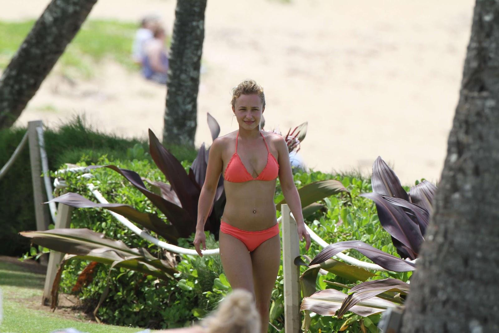 http://4.bp.blogspot.com/-YLXR0VhUjzU/T4nilCTWkhI/AAAAAAAAAKw/qYq-rbNjB3w/s1600/Hayden_Panettiere_hot_orange_bikini_+Hawaii_picture-01.jpg
